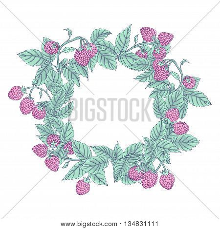 Round wreath or frame of raspberry on branches on a white background. Raspberry dark line drawn and painted pastel muted colors. Vector illustration