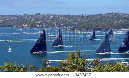 Sydney, Australia - December 26, 2014. Right after the start  Comanche is leading. The Sydney to Hobart Yacht Race is an annual event, starting in Sydney on Boxing Day and finishing in Hobart. sydney hobart yacht race sailing harbour sea ocean boxing day