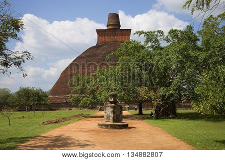 ANURADHAPURA, SRI LANKA - MARCH 11, 2015: At the Jetavana Dagoba. Religious landmark of the city Anuradhapura, Sri Lanka