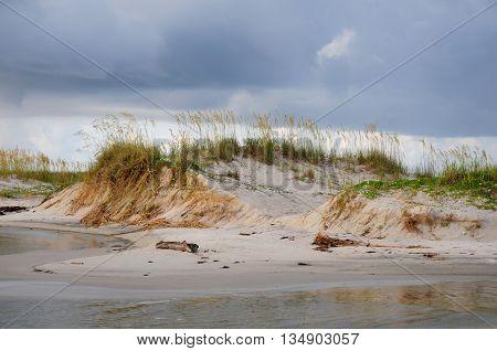 Beautiful sand dunes and sea oats along Alabama's Gulf coast