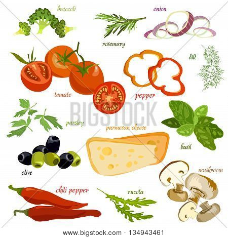 Vegetables pizza ingridients set. Tomato, pepper, onion slice, chili, dill and broccoli on white background isolated. organic healthy vegetables for cooking vegetarian pizza. Vector illustration.