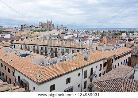 La Seu Cathedral, Rooftops And Ocean Horizon