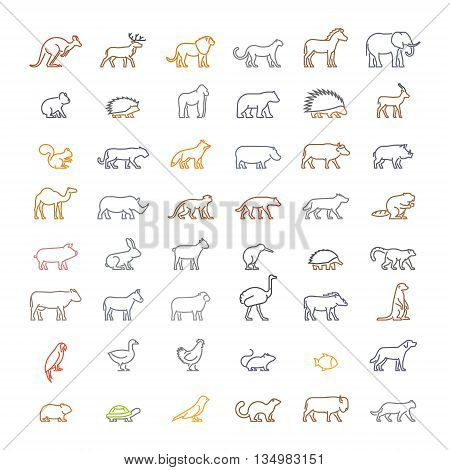 Vector color line set of silhouettes of animals. Line icon ferret meerkat chicken hedgehog cat dog and others. Open path.