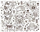 Woodland Animal Coloring Pages for Kids. Hand drawn vector on a white background. Coloring book. Ornamental tribal patterned illustration for tattoo, poster, print. Tribal animal coollection of deer, raccoon, beaver and hedgehog, deer, raccoon, beaver and poster