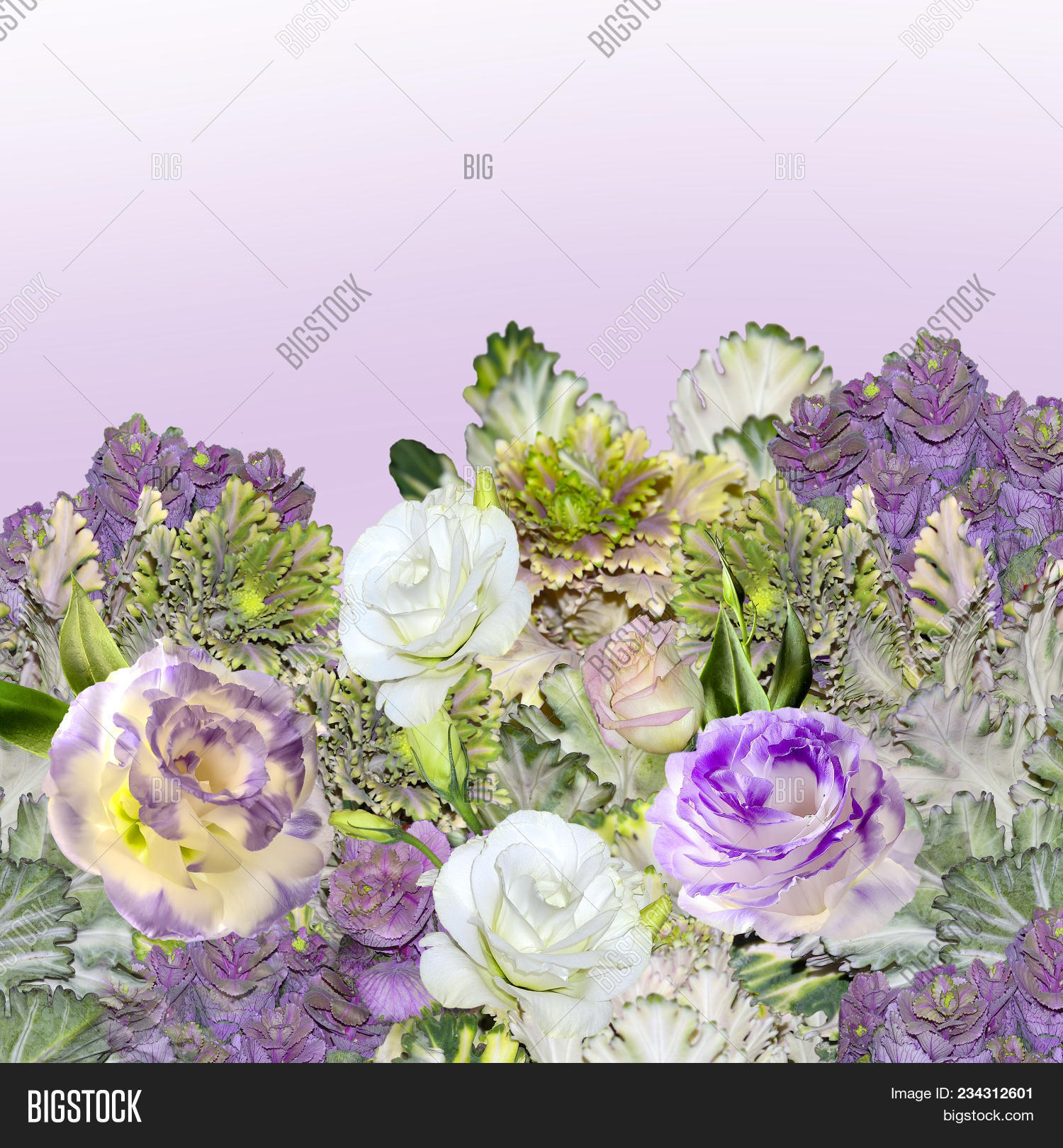 Floral Border Bouquet Image Photo Free Trial Bigstock