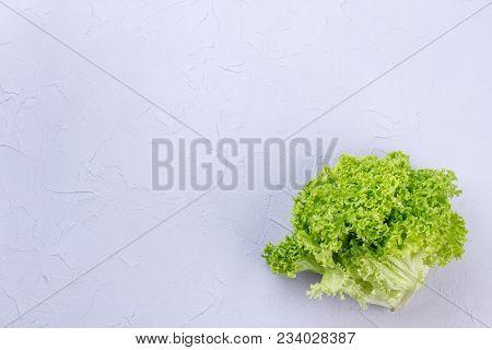 Salad Leaf Lettuce And Copy Space. Studio Shot Of Green Lettuce Salad On Light Textured Background.