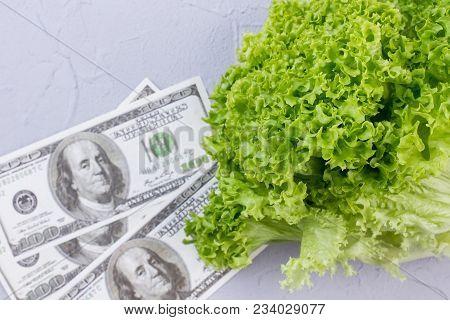 Green Organic Lettuce And Paper Cash. Fresh Lettuce Salad And Dollars, Focus On Lettuce. Organic Foo