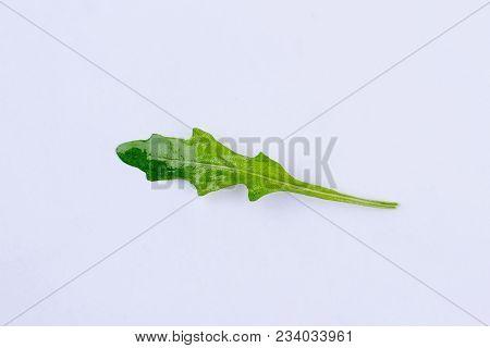 Leaf Of Arugula On White Background. Green Fresh Rucola Leaf. Benefits And Harm.