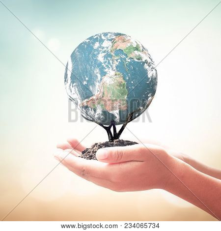 World Environment Day Concept: Human Hands Holding Tree Of Earth Global Over Blurred Nature Backgrou