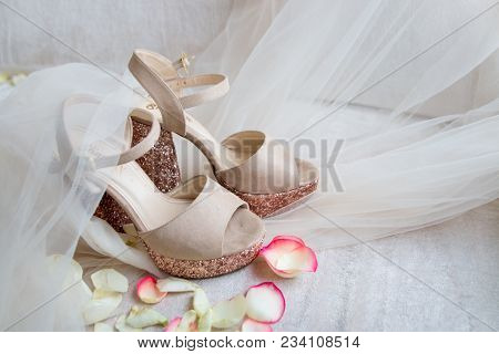 Elegant Festive Shiny Gold Shoes On A Light Tulle In Rose Petals For The Bride