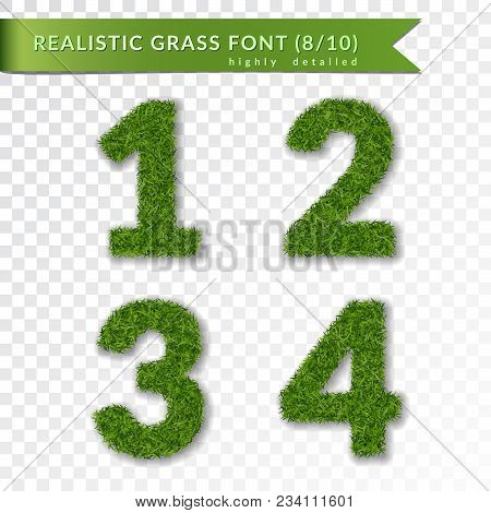 Grass Numbers 1 2 3 4. Green Numbers One, Two, Three, Four Isolated On White Transparent Background.