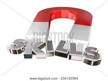 Skills Talents Expertise Magnet Letters Word 3d Illustration