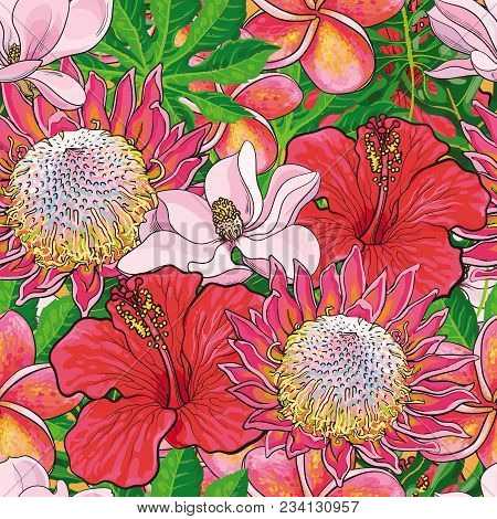 Tropical Flowers Seamless Pattern With Hand Drawn Exotic Blooms Of Hibiscus, Protea, Magnolia And Pl