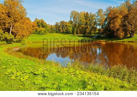 Autumn Sunny Landscape. Forest Autumn Trees At The Bank Of The Small Forest River In Sunny Autumn Da