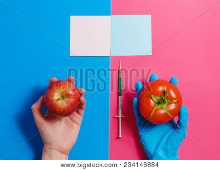 Genetically Modified Tomato on Pink or Natural Red Apple on Blue. GMO Concept poster