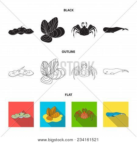 Electric Ramp, Mussels, Crab, Sperm Whale.sea Animals Set Collection Icons In Black, Flat, Outline S