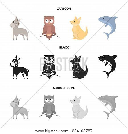 Donkey, Owl, Kangaroo, Shark.animal Set Collection Icons In Cartoon, Black, Monochrome Style Vector