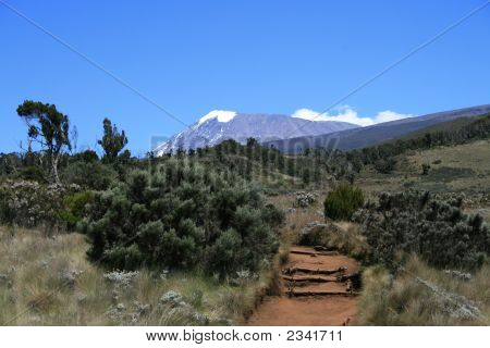 View At Mt. Kilimanjaro