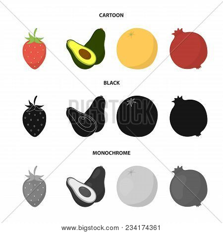 Strawberry, Berry, Avocado, Orange, Pomegranate.fruits Set Collection Icons In Cartoon, Black, Monoc
