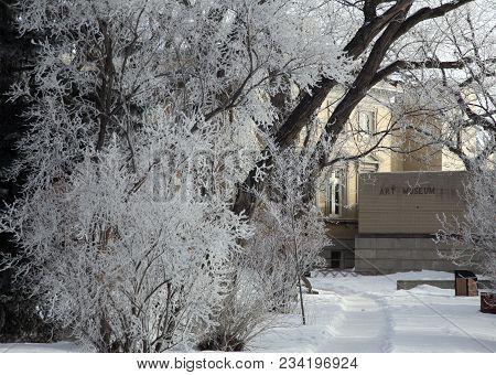 Hoar Frost Prairie
