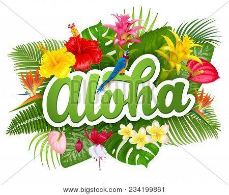 Aloha Hawaii Hand Drawn Lettering And Tropical Plants, Leaves And Flowers. Hawaiian Language Greetin