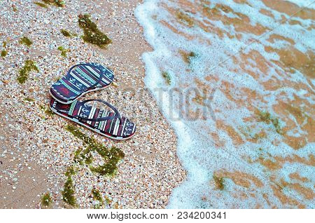 Beach Slippers On The Shell Seashore, Polluted With Green Algae