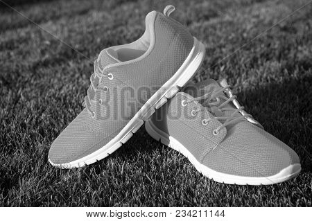 Sports Shoes Sneakers On Fresh Green Grass. Sports In The Open Air. Orange Sport Sneakers Modern Sty