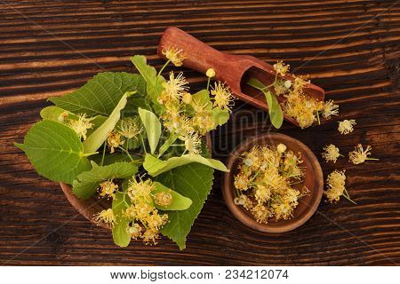 Linden Flowers And Leaves  In Wooden Spoon And Bowl On Wooden Table From Above. Herbal Medicine. Til