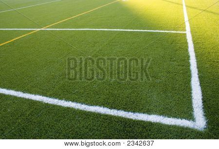 Lines In The Grass Field
