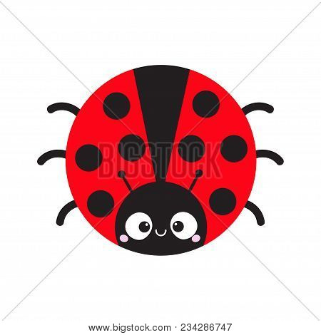 Cute Cartoon Lady Bug Round Icon. Cute Cartoon Funny Character. Smiling Face. White Background. Isol