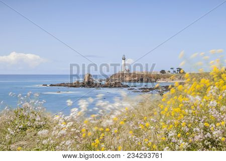Pigeon Point Lighthouse On A Windy Spring Day, Focus On Lighthouse, Foreground Flowers Are Blowing I