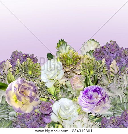Floral Border With Bouquet Of Purple With White Eustoma (lisianthus) Flowers And Ornamental Cabbage
