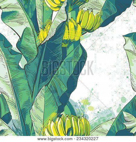 Vector Tropical Banana Leaf, Fruits Textural Seamless Pattern. Large Palm Foliage Nature Green Backg