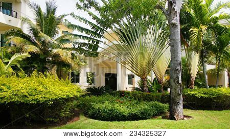 House in the tropics. Apartment
