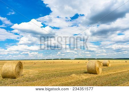 Dry Rural Field With Hay Stacks. Dry Rural Field With Hay Stacks.