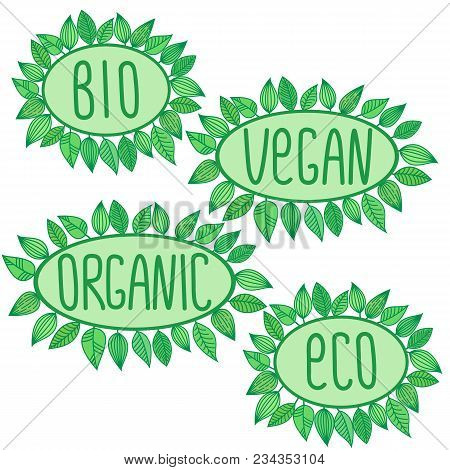 Eco, Bio, Organic, Vegan Signs In Green Oval Frame With Leaves Around, Vector Label Illustration, Ec