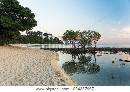 Beautiful Sunset At Neil Island, Andaman And Nicobar, India. Silhouette Of Trees Against Sunset Sun
