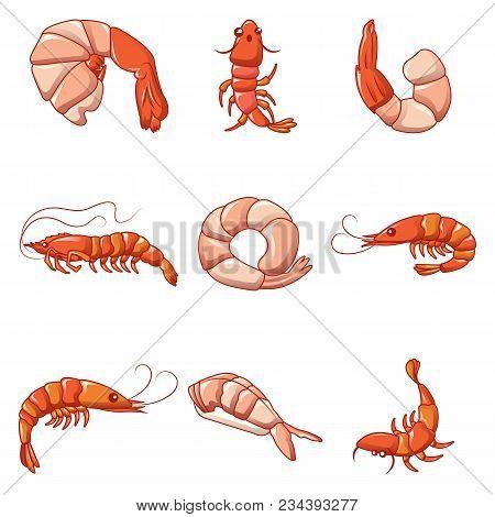 Shrimp Prawn Cooked Icons Set. Cartoon Illustration Of 9 Shrimp Prawn Cooked Vector Icons For Web