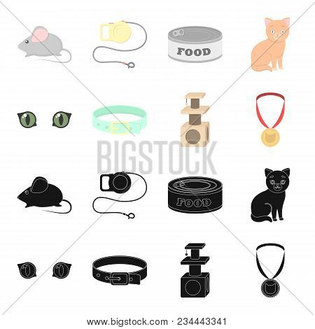 Cat Eyes, A Collar, A House For A Cat, A Medal On A Ribbon.cat Set Collection Icons In Black, Cartoo