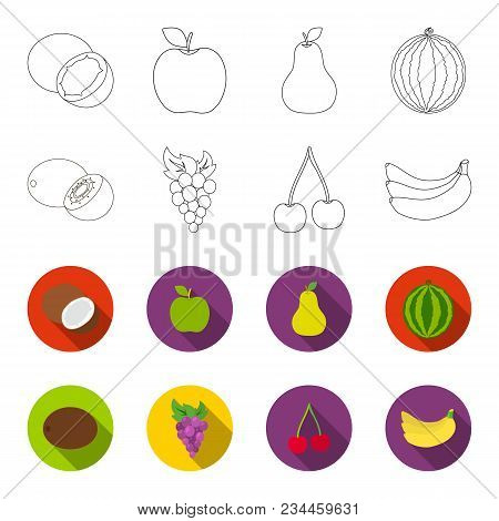Kiwi, Grapes, Cherry, Banana.fruits Set Collection Icons In Outline, Flet Style Vector Symbol Stock