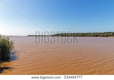 Rippled brown muddy water, green vegetation and blue sky landscape at St Lucia Estuary in iSimangaliso Wetland Park in Zululand, South Africa poster