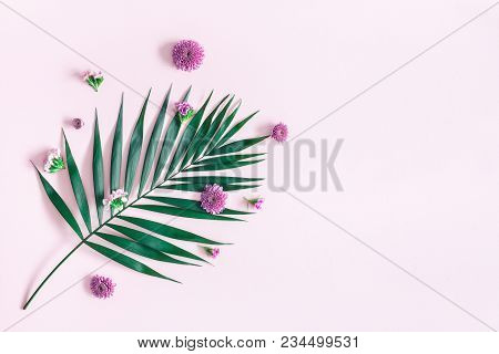 Summer Flowers Composition. Green Tropical Leaf And Pink Flowers On Pink Background. Summer Concept.