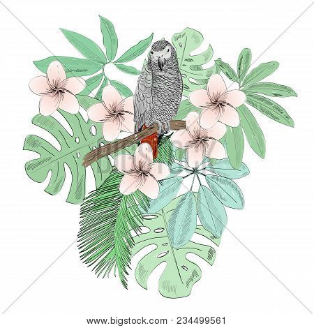 Tropical Vector Illustration With Parrot And Flowers.