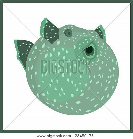 Vector Flat Illustration With Balloo-nfish. Aqarium Fish.