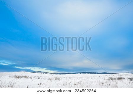 Blue Sky. Winter Landscape. Winter Wonderland With Forest Snowy Winter Trees. Cold Toned Winter Land