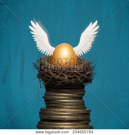 A Golden Egg In Nest On A Pile Of Coins. The Metaphor Of Accumulation Of Money And Successful Invest
