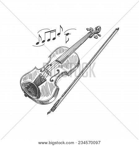 Beautiful Vector Hand Drawn Violin And A Bow Illustration. Detailed Retro Style  Image. Vintage Sket