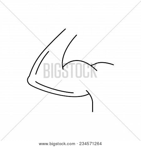 Arm Biceps Icon. Outline Arm Biceps Vector Icon For Web Design Isolated On White Background