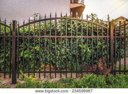 Black Iron Fence, Black Metal Garden Fence
