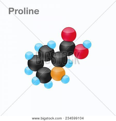 Molecule Of Proline, Pro, An Amino Acid Used In The Biosynthesis Of Proteins, Vector Illustration